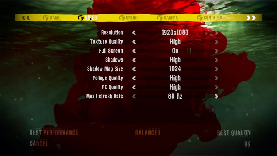Dead Island graphics options